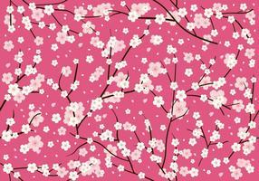 Modèle sans couture fleur de prunier vecteur