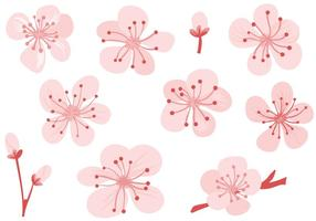 Vecteurs libres de fleur de prunier vecteur