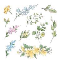 grand ensemble de fleurs et de feuilles tendres aquarelles