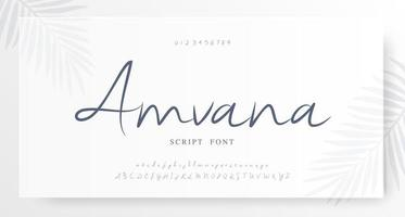 alphabet de script élégant et police de nombres