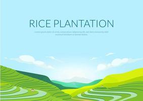 affiche de plantation en terrasse vecteur