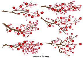 Ensemble de vecteur de fleur de prunier japonais