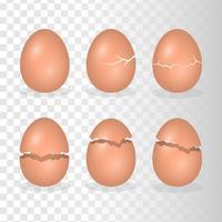 Œufs avec illustration de l'effet de fissure