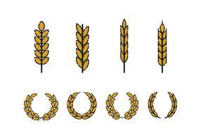 Vecteur d'oreilles de blé gratuit