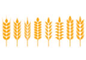 Ensemble d'icônes oreilles de blé vecteur