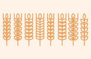 Icônes d'oreilles de blé et logos vecteur