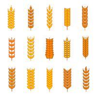 Vecteur gratuit d'icônes oreilles de blé