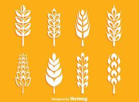 Vecteur de collection d'oreilles de blé blanc