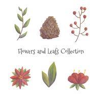 Collection de fleurs et de feuilles de Noël mignon vecteur