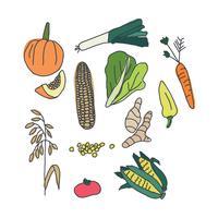 Doodle coloré de légumes vecteur