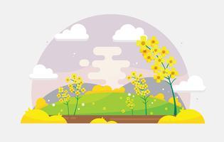 Vecteur gratuit de champ de fleurs de canola