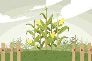 Vecteur gratuit de tige de maïs