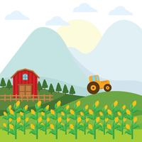 Fond de ferme de tiges de maïs vecteur