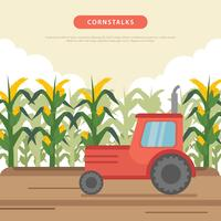 Illustration de champ de maïs vecteur