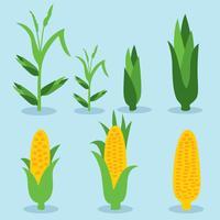 Élément de maïs sur le vecteur bleu