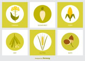 Plat GMO Produit Icon Set Vector