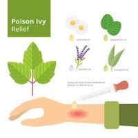 Poison Ivy Relief Infographie vecteur libre