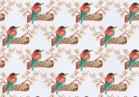 Modèle sans couture de vecteur libre avec des oiseaux sur la branche
