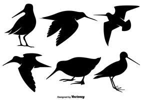 vecteur silhouettes d'oiseaux snipe