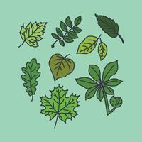 Doodle de feuilles vecteur