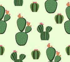 modèle sans couture de plantes de cactus mignons