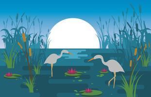 illustration de scène de marais vecteur