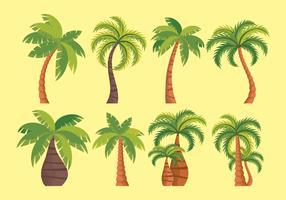 Palmier Icônes vectorielles vecteur
