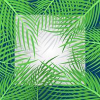 Carte de vacances tropicales avec illustration de feuilles de palmiers vecteur
