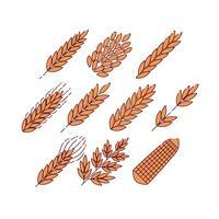 Vecteur gratuit de l'icône de plantes de céréales