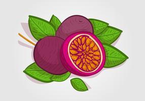 Illustration vectorielle de Fruit de la passion gratuit
