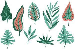 Vecteurs de feuilles tropicales gratuites