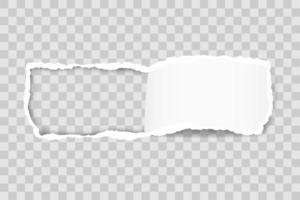 bord de papier déchiré pour la conception avec un modèle d'espace transparent vecteur