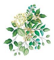 fleurs de bourgeons blancs avec bouquet de feuilles peinture vecteur
