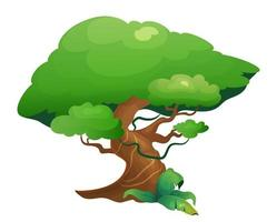 arbre de la végétation de la jungle vecteur
