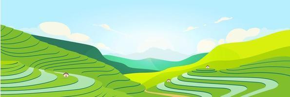 champs en terrasses au coucher du soleil