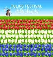 Affiche de vecteur pour le festival des tulipes aux Pays-Bas