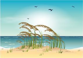 Illustration vectorielle de mer avoine plage vecteur