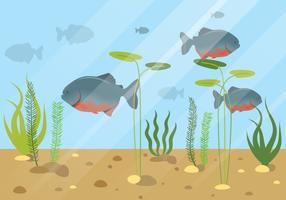 Piranha Fish Illustration d'animaux aquatiques vecteur