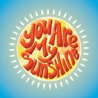 Vous êtes mon lettrage de soleil avec le style 3D vecteur