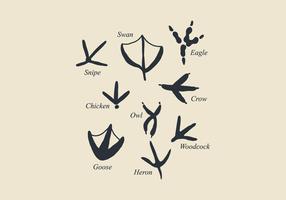 Empreintes d'oiseaux vecteur