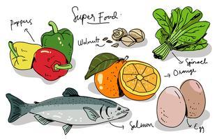 Super Foods dessinés à la main Vector Illustration