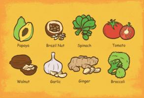 super aliments vecteur