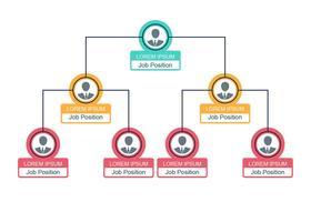 Graphique d'organigramme d'affaires vecteur