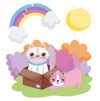 étirement chat et autre dans la boîte soleil à l'extérieur des animaux