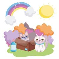 chat et autres animaux de compagnie dans la boîte soleil paysage
