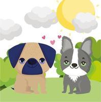 Chiens carlin et boston terrier assis dans l'herbe animaux