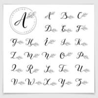 alphabet dessiné à la main écrit avec un stylo pinceau. vecteur