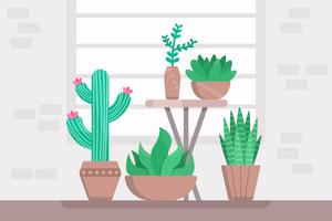 Vecteurs succulentes