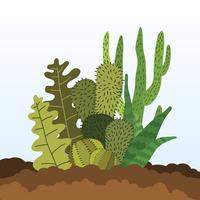 Illustration de succulentes