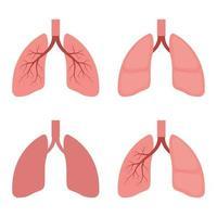 illustration de conception de vecteur de poumons isolé sur fond blanc